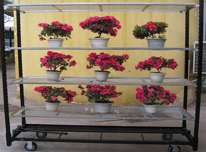 Danish Dutch Steel Flower Display Trolley Cart